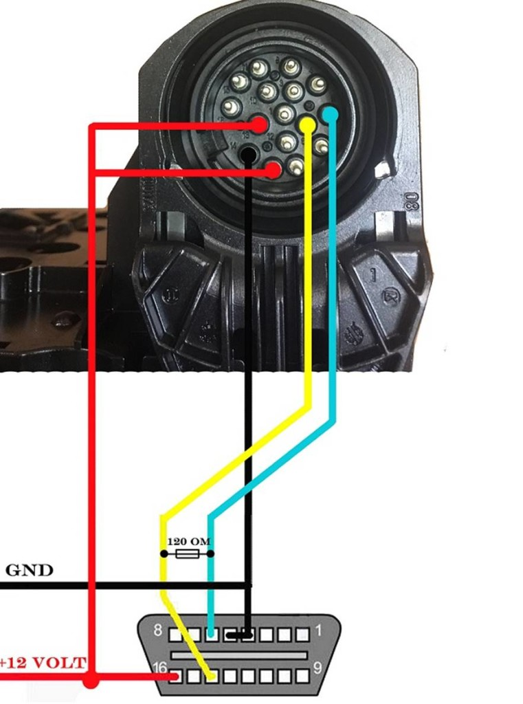 bmw-egs-reset-diagram